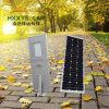 Het geïntegreerdet Licht van de Tuin Soler in LEIDENE ZonneStraatlantaarns 80W