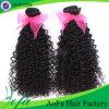 Extensão Curly Kinky mínima do cabelo humano de Remy do cabelo de Braziliany da forma