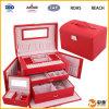 La caja de almacenaje cosmética y compone la caja del almacenaje (SP-DC010)