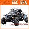 Euro4 168/2013 Duin 1100cc van de EEG EPA 4X4 Met fouten