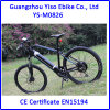 Vélo de montagne d'E avec le frein hydraulique Evehicle de Tektro DIS