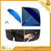 لمع [لد] مستقيمة عظم مظلة