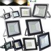 Indicatore luminoso di inondazione luminoso eccellente di alto potere LED (EW-FL120W)