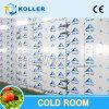 Lieferant Guangzhou-China stellte Kühlraum mit Installations-Service zur Verfügung