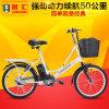 Электрический Bike (T2005)