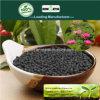 Il carbonio di Kingeta ha basato il fertilizzante composto NPK 28-6-6 per l'erba