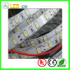 2835 DC12V 22lm/Chip Flexible LED Strip Ribbon