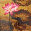 Peintures à l'huile sur la toile (HSF808001)