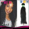 Het in het groot Curly Weave Cuticle Remy Maagdelijke Braziliaanse Menselijke Haar van Jerry