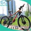 36V 250W Hub Motor Powered Mountain bicicleta elétrica com bateria