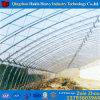 Casa verde da película agricultural de Multispan para o tomate