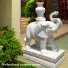 Marble White Marble Elephant Custom Stone Carving Elefante de animais Outdoor Garden Door Ornaments Decorative Stone Vivid Garden Decoration