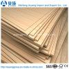 contre-plaqué commercial de faisceau d'eucalyptus de 12mm pour la décoration de meubles