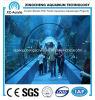 Tunnel d'acrylique de projet d'aquarium