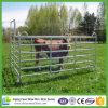 Panneau galvanisé de ranch de bétail la cour de bétail
