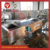 Máquina refrigerando de descascamento das hortaliças de aço inoxidável