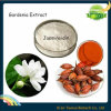 100% Natural Extracto Jasminoidin Gardenia