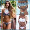 Il costume da bagno sexy delle donne dello Swimwear spinge verso l'alto l'insieme brasiliano del bikini