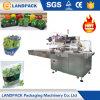 Empaquetadora vegetal de la lechuga automática del flujo