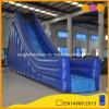 熱い販売水演劇装置(AQ09250)の青く膨脹可能な水スライド