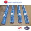 API Standard Petroleum Equipment Downhole Motor für Ölfeld
