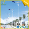 8mtrs illuminazione solare della strada di illuminazione 80W LED di altezza 12hrs