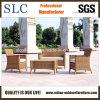 Sofà stabilito di /Garden di stile del sofà americano moderno del rattan (SC-B1002)