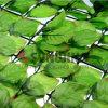 잎 인공적인 잔디 담 인공적인 녹색 담