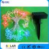 Partie en plastique chaîne solaire lumière avec 10pcs Multi LED de couleur, Couleur : vert, bleu, rouge