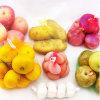 Empaquetage de toutes sortes de sac de maille de gaze du fruit pp