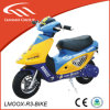 49cc Mini Moter Cheap Hot Sales Chinese Motorcycles with Alloy Pull Starter