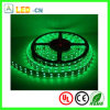 144W/Roll Double Lines SMD 5050 Flexible Strip Light