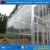 Hydroponic Serre van het Glas van Venlo voor Landbouw