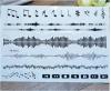 Etiquetas provisórias impermeáveis do tatuagem do projeto elegante do Totem da música