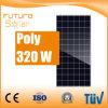 Panneau solaire 320W de haute performance de Futuresolar poly pour le système d'alimentation solaire