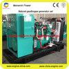 Prix standard de générateur de gaz de LPG de puissance verte