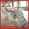 Machine de nettoyage de jet de fruits et légumes en stock