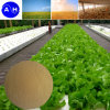 Aminoácidos libres del 80% para el fertilizante orgánico
