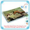 Nice Printed Soft Cover Chinese Child Art Books