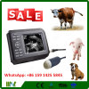 Scanner vétérinaire tenu dans la main de vente chaud d'ultrason d'équipement médical (MSLVU04)