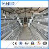 Chicken Layer Cage with Automatic Drinker System