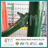 Revestido de PVC 4X4 5X5 6X6 Régua de Euro de malha de arame soldado