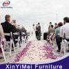 La resina de caoba silla plegable para el evento