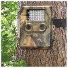 探求の土地(DK-8MP) Dモジュール(SCT-M-32)のためのLE8MPの道のカメラ
