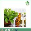 Aceite Esencial de Menta 100% de pureza