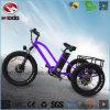 脂肪質のタイヤの電気三輪車浜のマウンテンバイク