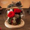 Flor real preservada 100% natural de Rose en el vidrio para el regalo de cumpleaños