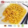 Núcleos de maíz dulce conservados de calidad superior
