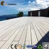 Facile installare la piattaforma esterna del composto della pavimentazione WPC