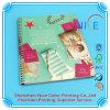 Softcover Catalog, Brochure, Manual, Magazine Printing Company